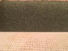 Green carpet (like new). 13ft x 13 1/2 ft.