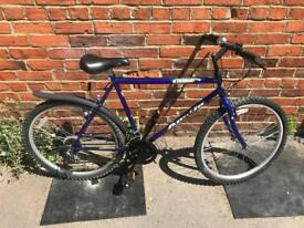 "Apollo Radiant Gents Mountain Bike. 21"" Frame, Serviced, Free Lock, Lights, Delivery"