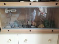 Large vivarium
