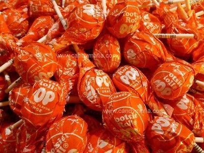 Tootsie Pops ORANGE 60 pops Orange Tootsie pop lollipop bulk candy - Orange Lollipop
