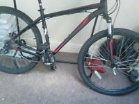 specialized 29er bike