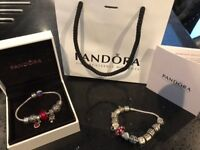 Authentic Pandora bracelets and 21 charms. Boxed and gift bag available. Perfect Christmas gift.