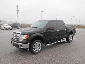 2014 Ford F-150 XTR SuperCrew 4x4 5.0L V8 Windsor Region Ontario image 10