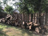 Logs for collection
