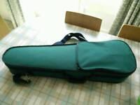 Full size violin case green