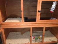 RABBIT HUTCH AND COVERS