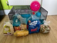 Rodent cage+extras