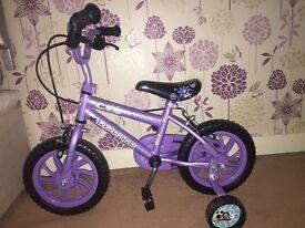 Little Girls Lola the Ladybird Bike