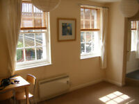 Lovely light 1 bed city centre flat (avail now)