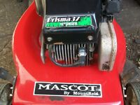 mountfield mascoct petrol mower