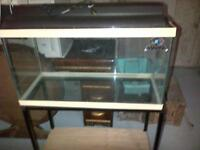 Aquarium (Approx. 20 Gallons) and Stand