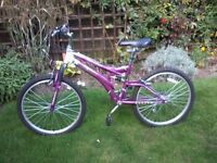 Girls/Ladies Pink/Purple Bicycle