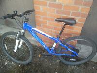 Mountain bike, very good condition £100
