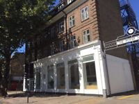 GENERAL SKILLED HANDYMAN REQUIRED CHISWICK, EALING WEST LONDON