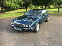 Very Rare Excellent Condition - Jaguar V8 XJ8 Executive Series Saloon