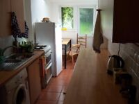 Large double room in 4 bed professional house + internet + furnished + garden