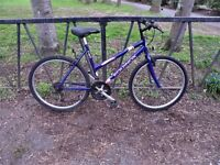 """Ladies Mountain Bike. Fully Serviced & Ready To Ride. Guaranteed. 18"""" Frame. Brand New Chain"""