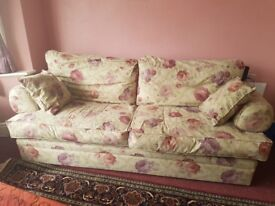 2 sofas (2 seater and 3 seater)