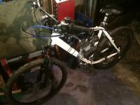 Motorised petrol mountain bike