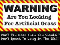 Artificial Grass 24/7/365