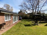 HOLIDAY / SHORT LET 1 br self catering cottage in TN3, garden, parking, 1hr to Central London
