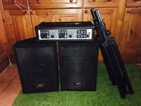 100W amplifier with 2 speakers