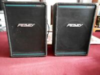 Peavey Speakers x 2