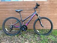 Two Dawes Child / Teenager / Ladies Mountain Bike