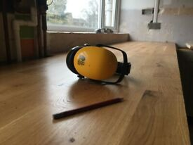 handyman / carpenter / plumber / painter