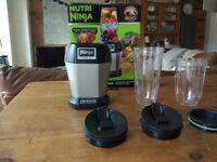 Nutri Ninja Personal Blender 900W – BL450UK – Silver