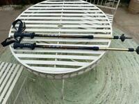 Walking Poles - telescopic