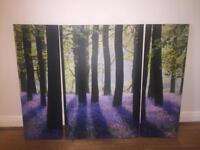 BEAUTIFUL TREE SPLIT CANVAS