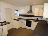 Ashington 2 Bed Terrace, Chestnut St - SPEEDY1564