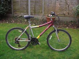 Apollo Contour Man's Red Bike
