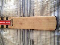 Gray Nicolls cricket bat E41 scoop - Australian Custom made GN