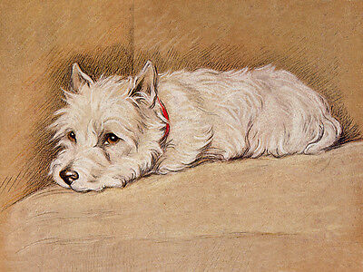 WEST HIGHLAND WHITE TERRIER WESTIE DOG GREETINGS NOTE CARD CUTE DOG ON CHAIR