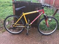 British eagle mountain bike