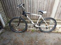 Mens mountain bike. Ammaco Ethos