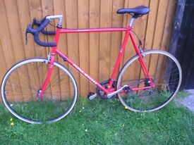 "Raleigh Pursuit roadbike. Large 25"" frame.Good condition"