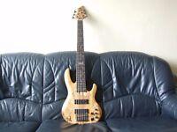 Bass Guitar Fretless ESP LTD