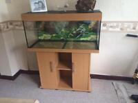 3ft aquarium