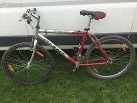 Giant mountain bike 19.5 inch
