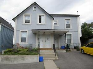 Attractive Bachelor Near Little Italy, Available July 1st