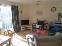Two cosy rooms to rent - only 2 minutes to UWS!