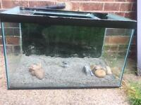Fish tank with sand