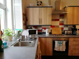 Large double room in lovely flat in town centre from 1st July, £380pmth inc bills