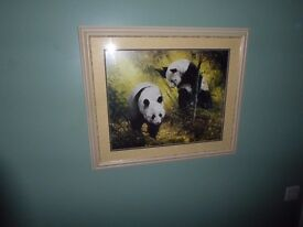 Picture of a Panda's in cream frame