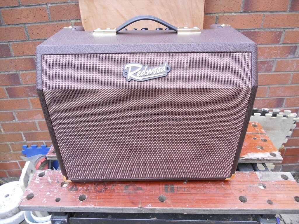 Redwood Acoustic Guitar Amp With Chorus And Fx And Mic Input Now 50