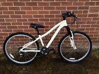 Marium adult bicycle