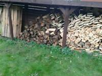 Looking for free wood/logs/pallets